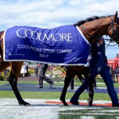 After taking out the Group 1 Coolmore Stud Stakes in November of 2017