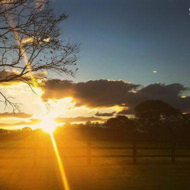 Sunset at Segenhoe