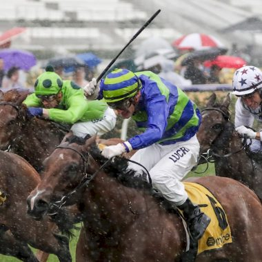 Bella Rosa ridden by Mark Zahra wins the Bumble Stakes  at Flemington Racecourse on November 06, 2018 in Flemington, Australia. (George Salpigtidis/Racing Photos)